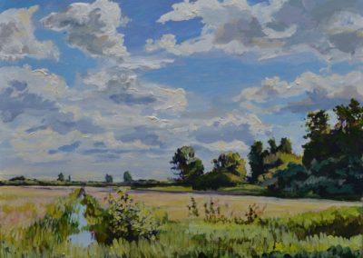 Onner polder